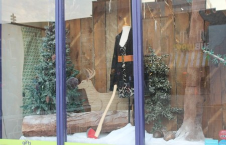 Christmas Window Displays, Bliss, Market Square, Knoxville, December 2012