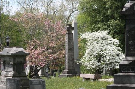 Old Gray Cemetery, Knoxville, April 2013