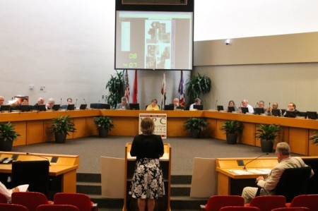 Kim Trent addresses the Metropolitan Planning Commission, Knoxville, June 2013