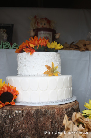 Cake in Bakery Window, 600 Block of North Gay Street, Knoxville,
