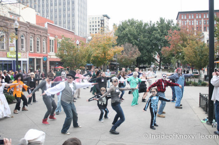 Thriller, Market Square, Knoxville, October 2013