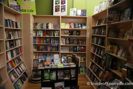 Young Adult Section, Union Avenue Books, 517 Union Avenue, Knoxville, November 2013