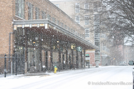 Daylight Building, Knoxville in the Snow, January 2014