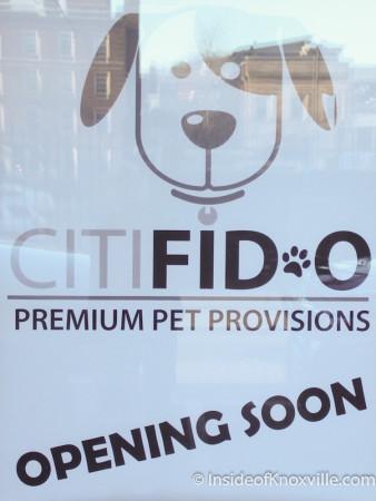 CitiFid-O, 429 Union Avenue, Knoxville, February 2014