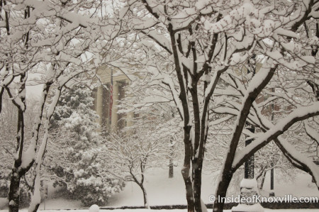 LMU Law School, Knoxville in the Snow, February 13, 2014