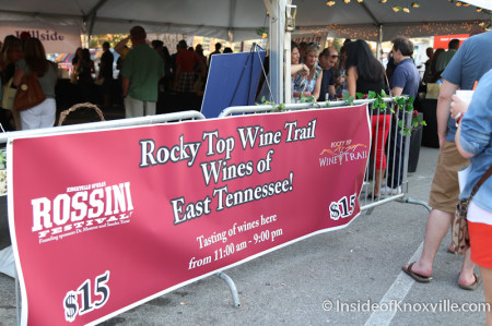 Rossini Festival, Knoxville, 2014