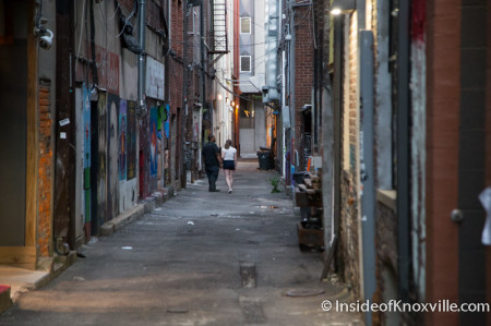 Couple viewing the art in Armstrong/Strong Alley, Knoxville, July 2014