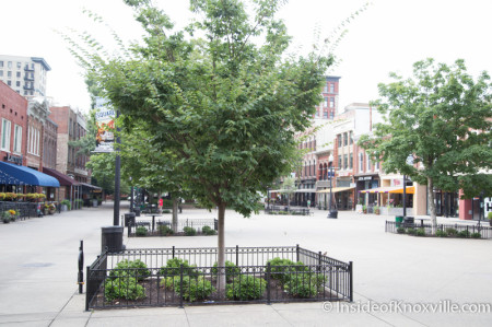 Waiting for Color, Market Square, Knoxville, August 2014