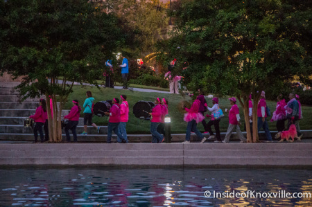 Race for the Cure, World's Fair Park, Knoxville, October 2014