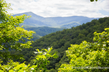 Vista from the Trail to Laurel Falls, Great Smoky Mountains National Park, Summer 2014