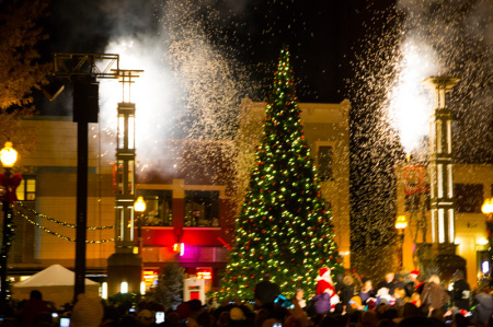 Lighting of the Christmas Tree, Celebration of Lights, Knoxville, November 2014