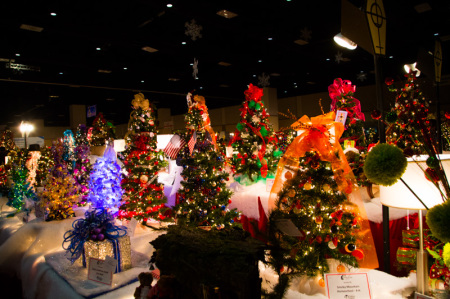 Fantasy of Trees, Knoxville, November 2014