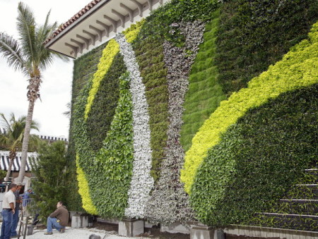 Vertical Garden in Palm Beach
