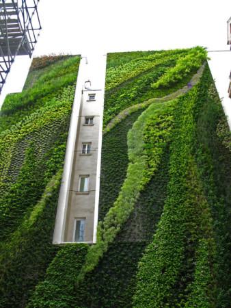 Vertical Garden in Paris