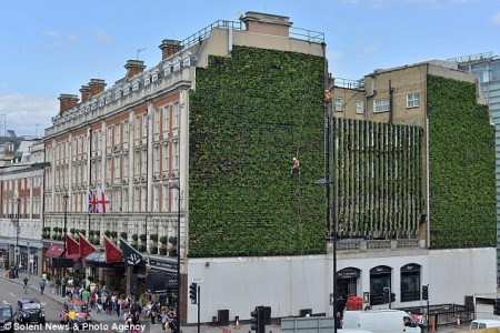 Vertical Garden in London