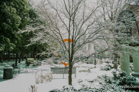 Ice in Krutch Park, Knoxville, February 2015