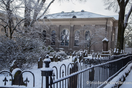 Ice in First Presbyterian Cemetery, Knoxville, February 2015