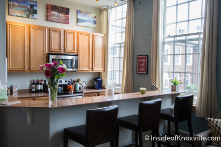 Brownlow School Lofts, Unit 206, Fourth and Gill Tour of Homes, Knoxville, April 2015