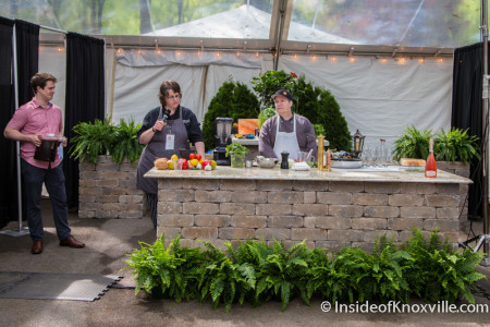 Culinary Arts Tent, Dogwood Arts Market Square Art Market, Knoxville, Spring 2015