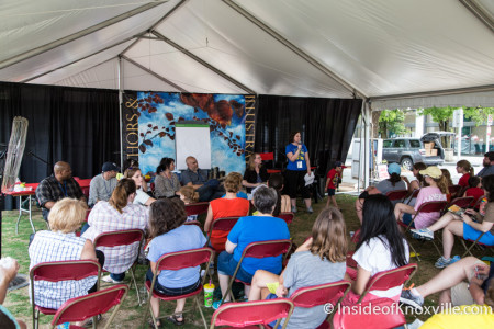 Children's Festival of Reading, Knoxville, May 2015