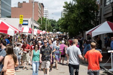 International Biscuit Festival, Knoxville, May 2015