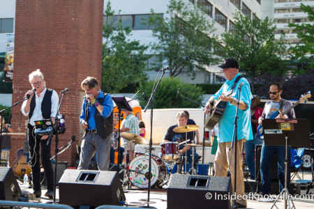 Tall Paul and Friends, Bob Dylan Birthday Bash, Market Square, Knoxville, June 2015