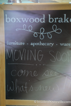 Boxwood Brake Closing in Downtown Knoxville, June 2015