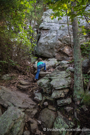 House Mountain, Knox County, Tennessee, July 2015