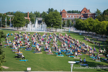 Yoga at the World's Fair Park, Knoxville, August 2015
