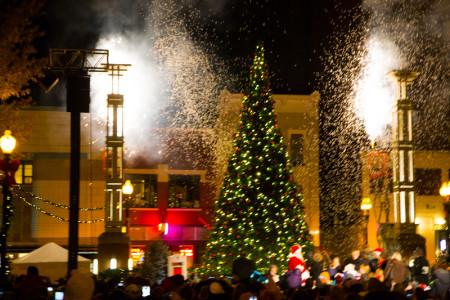 Celebration of Lighhts, Knoxville, November 2014