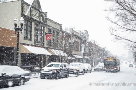 Snow Scenes in the City, Knoxville, January 2016