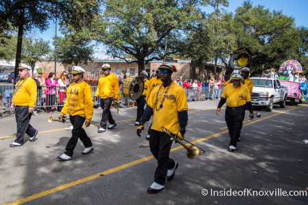 Mardi Gras Afternoon Parades, Mobile Alabama, February 6, 2016