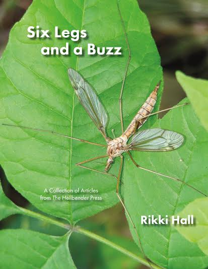 "Rikki Hall, ""Six Legs and a Buzz"" – A Celebration"