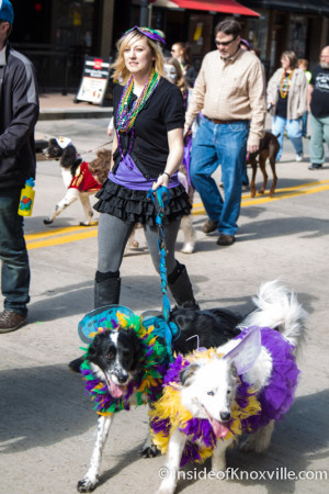 Mardi Growl, Knoxville, March 2016