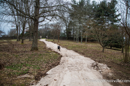 Walking Trail, Knoxville Botanical Garden and Arboretum, 2743 Wimpole Ave., Knoxville, February 2016