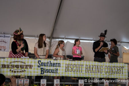 International Biscuit Festival, Knoxville, May 2016