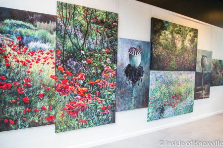 Exhibition of Margaret Scanlon Paintings, Knoxville Botanical Gardens and Arboretum, May 2016