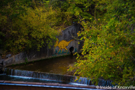 Dinosaur on First Creek, Knoxville, Ocboter 2016