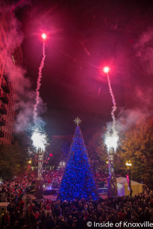 Lighting of the Christmas Tree, Krutch Park Extension, Knoxville, November 2016