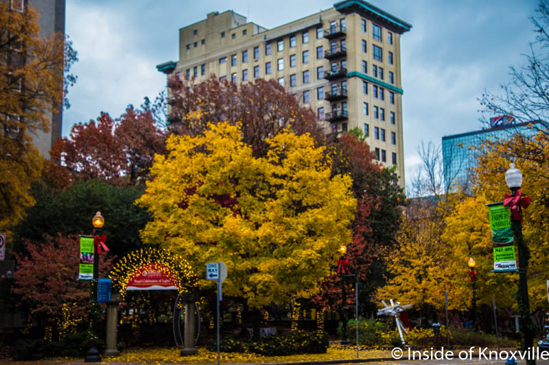 The Downtown Knoxville Ten Day Planner (12/11 – 12/20/2016)