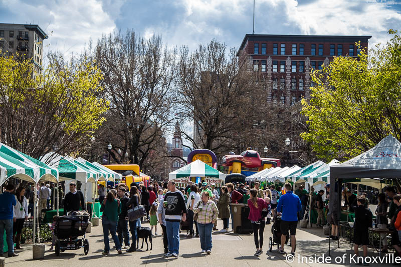 The Downtown Knoxville Ten Day Planner (3/19 – 3/28/2017)