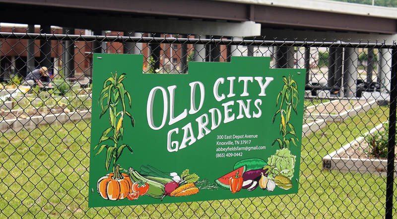 Two Urban Gardens Thrive in Former Food Desert