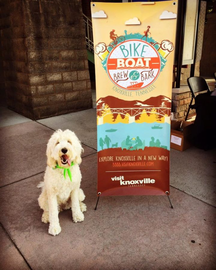 Bike Boat Brew and Bark – And That Doesn't Come Close to Covering It